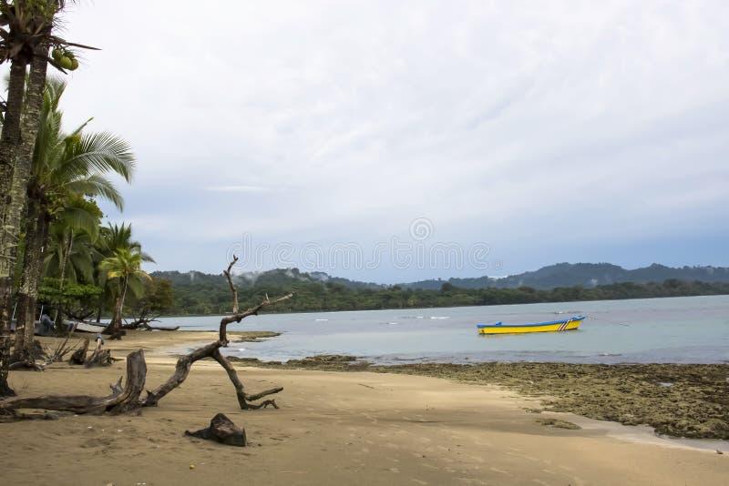Zonsopgang op Strand met Palmen en Heldere Gele Boot royalty-vrije stock afbeeldingen
