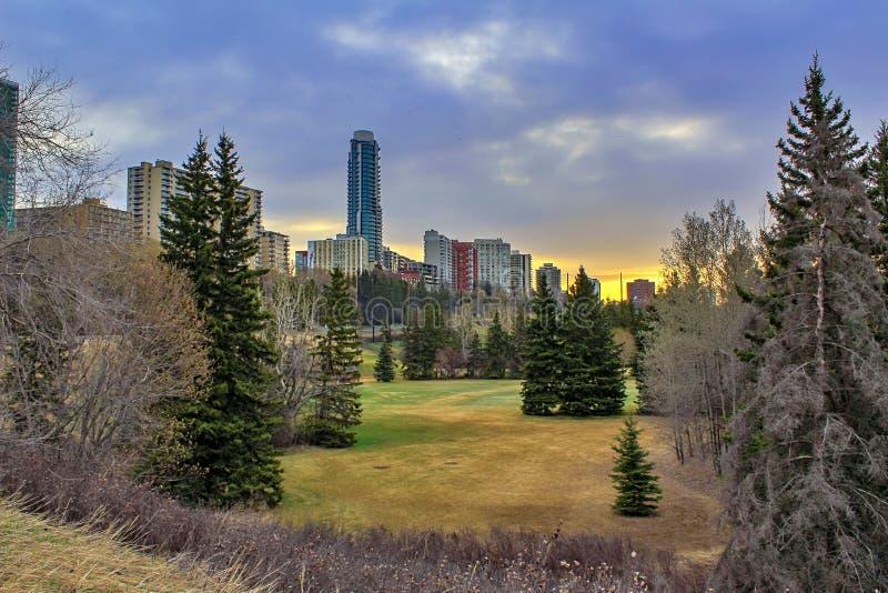 Zonsopgang over de Bomen en de Gebouwen van Edmonton stock foto