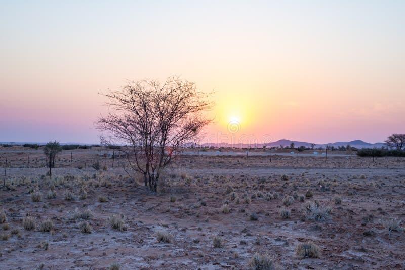 Zonsopgang over de Namib-woestijn, roadtrip in het prachtige Nationale Park van Namib Naukluft, reisbestemming in Namibië, Afrika stock foto