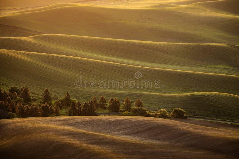 Zonsopgang over de rollende heuvels van het land royalty-vrije stock afbeelding