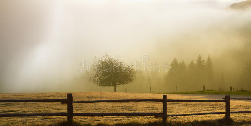 Zonsopgang over een gebied stock fotografie