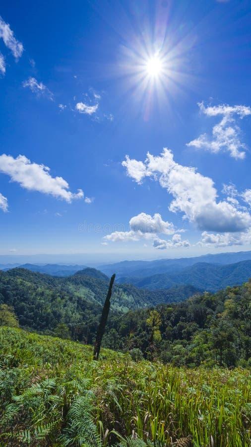 Zonsopgang over van de graslandschap en berg panorama, Chiangmai T stock afbeeldingen