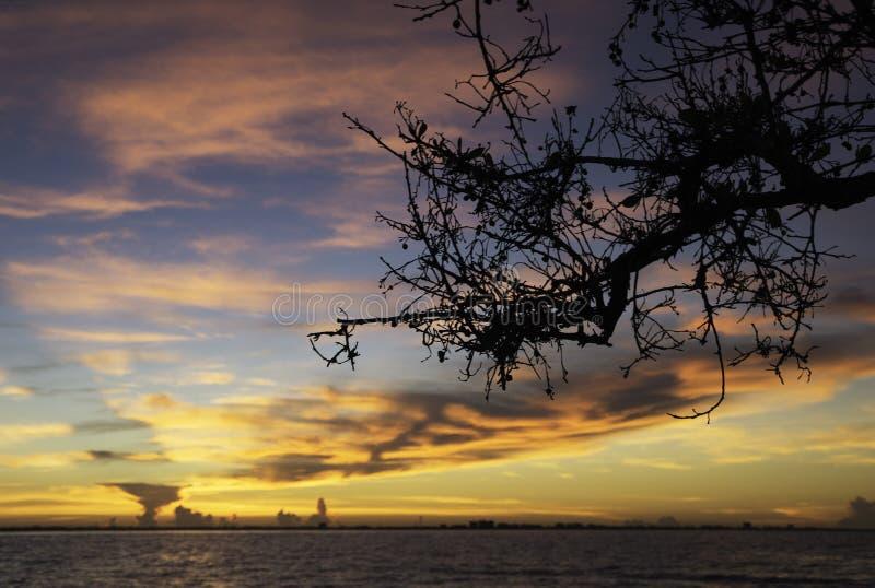 Zonsopgang in Sanibel-Eiland stock foto's