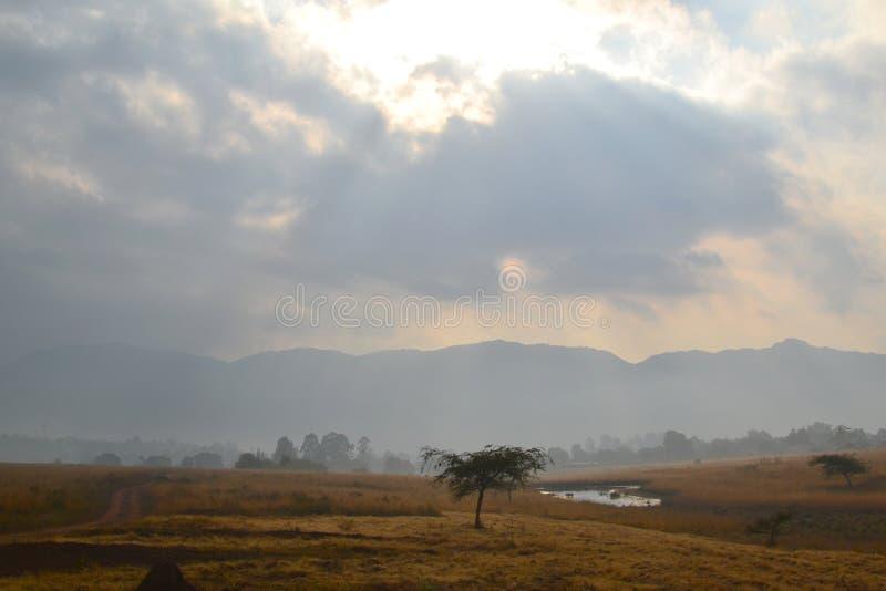 Zonsopgang in Swasiland royalty-vrije stock foto's