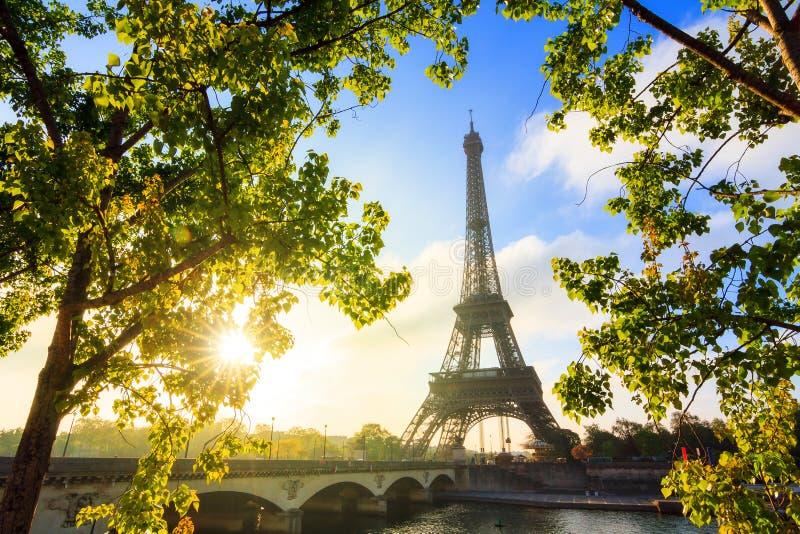 Zonsopgang van de lente de groene Eiffel stock foto's
