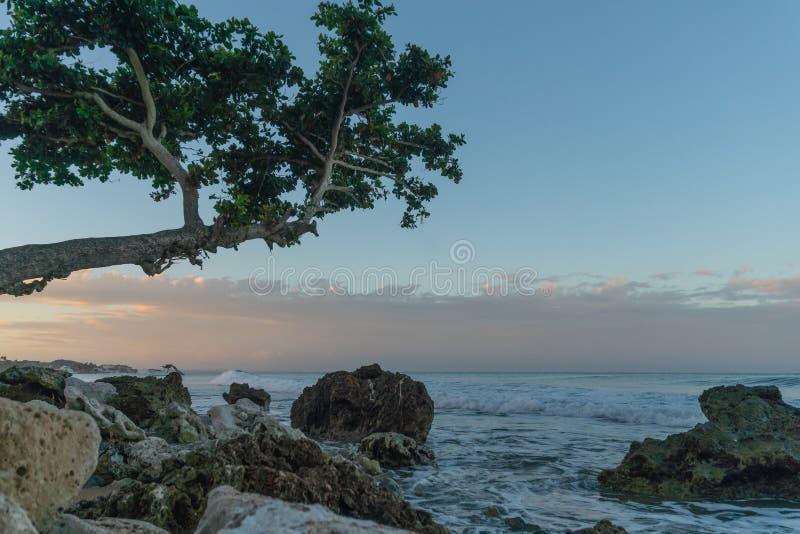 Zonsopgangmening langs een rotsachtig strand in Rincon, Puerto Rico stock foto