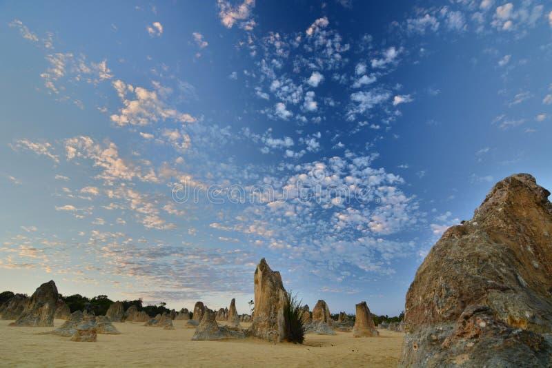 Zonsopgangtijd in Toppenwoestijn Nambung Nationaal Park cervantes Westelijk Australië australië stock afbeelding