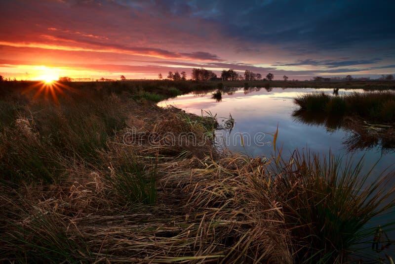 Zonsopgangzonnestralen over moeras in de herfst stock foto