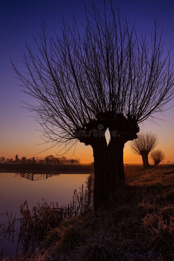 Zonsopkomst de bij de Knotwilgen, saules au lever de soleil photo libre de droits