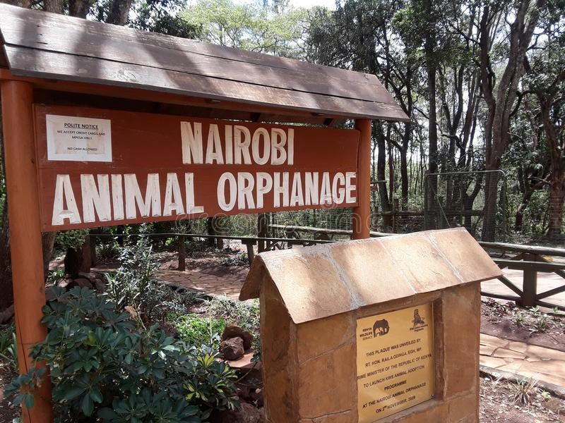 zoo lizenzfreies stockfoto