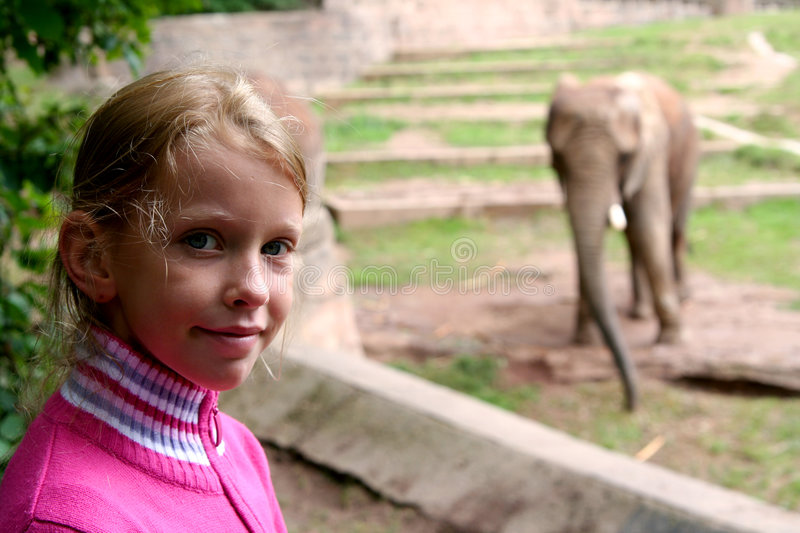 In the zoo royalty free stock image