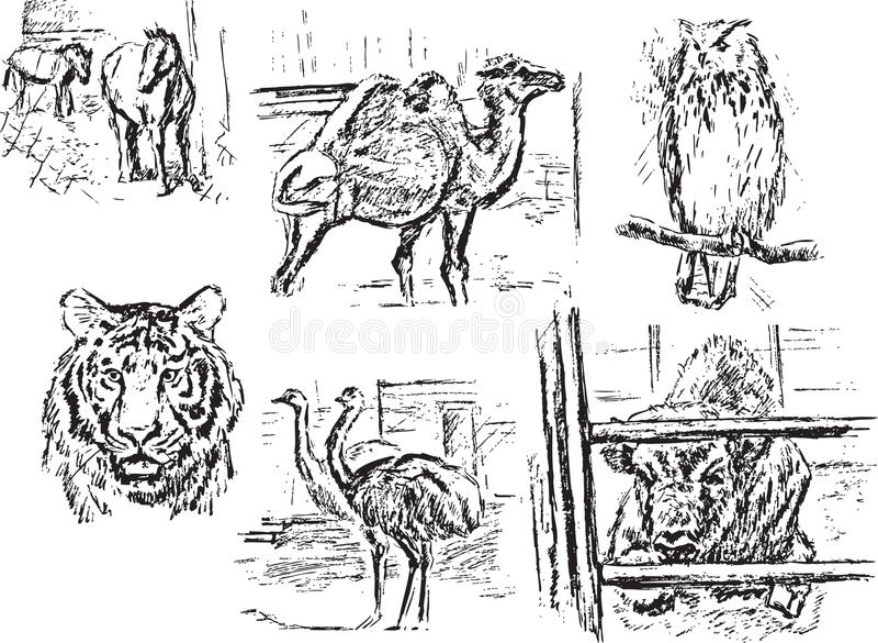 Zoo ilustracja wektor