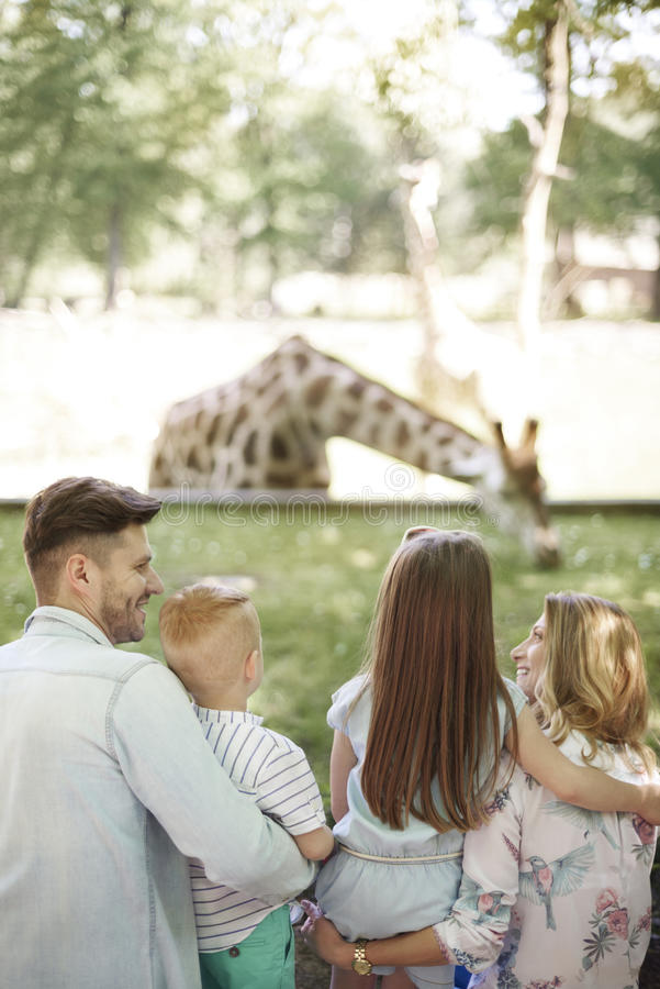 Free Zoo Stock Images - 93926784