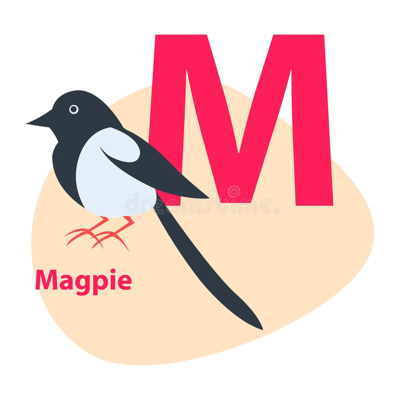 Zoo ABC Letter with Cute Magpie Cartoon Vector. Children ABC with cute animal cartoon vector. English letter M with funny magpie flat illustration isolated on vector illustration