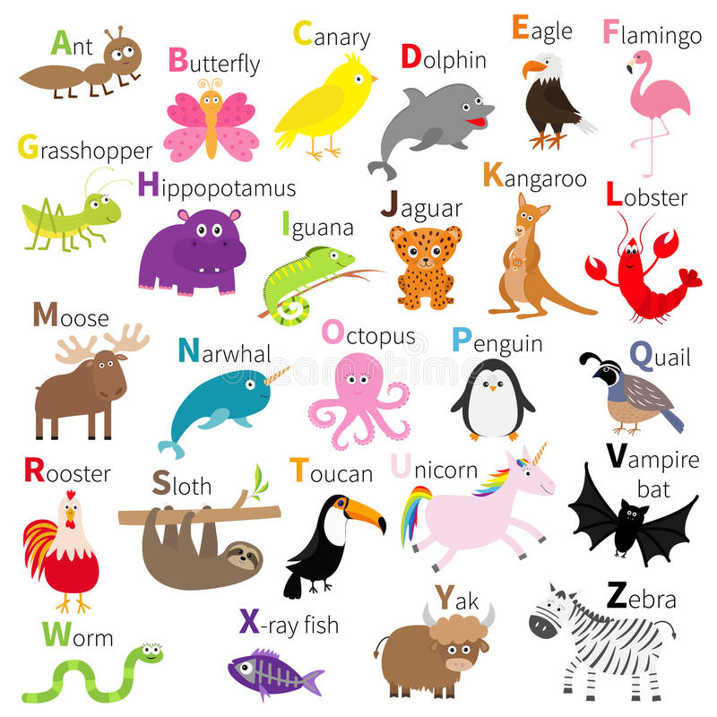 Zoo animal alphabet. Cute cartoon character set. White background. Baby children education. Butterfly, dolphin, flamingo, jaguar,. Lobster, penguin sloth royalty free illustration