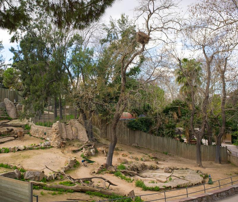 Zoo. Animal enclosure in a zoo stock images