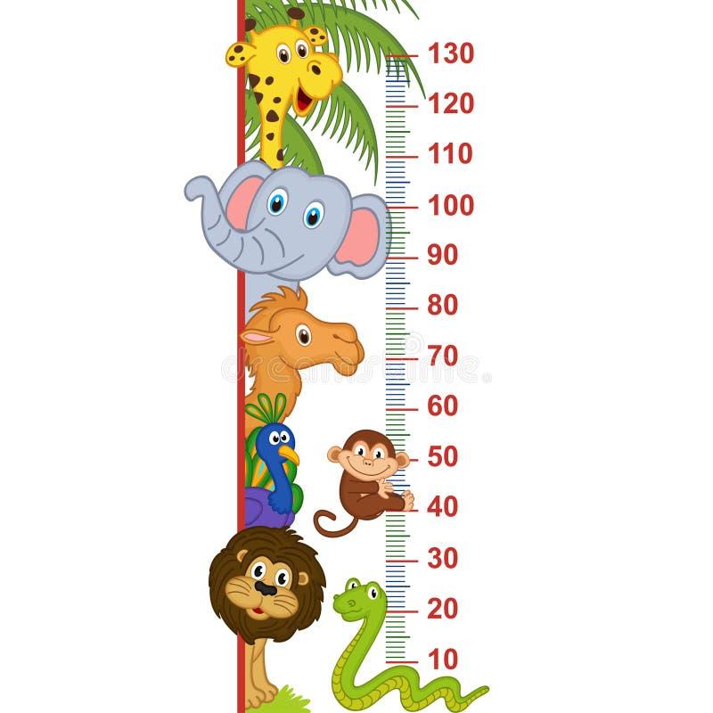 Zoo animal height measure. Vector illustration, eps stock illustration