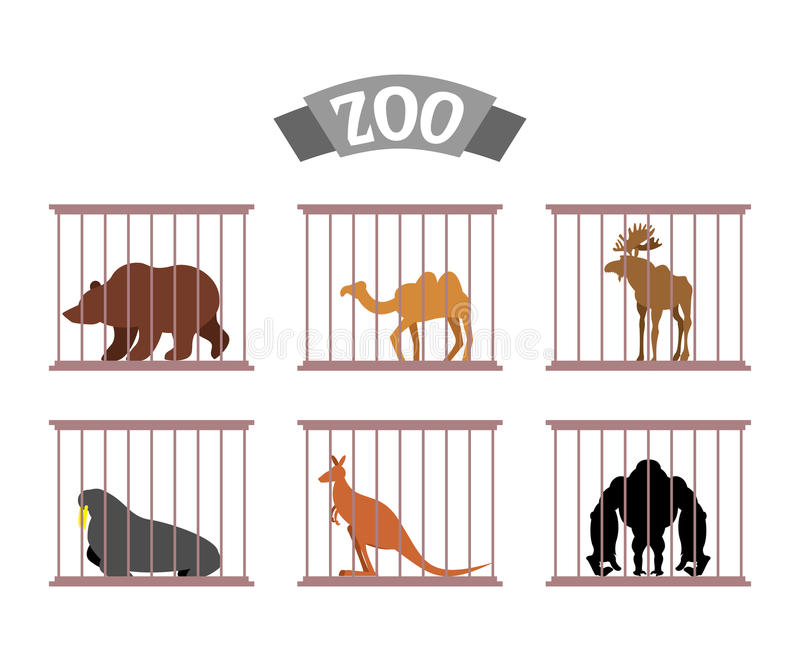 Zoo. Collection Of Wild Animals In Cages. Beasts Behind