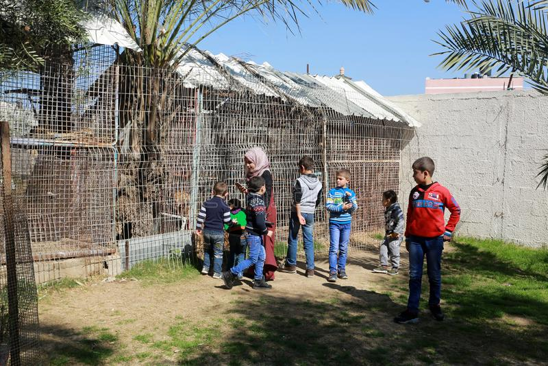 Zoo i Rafah ger besökare en möjlighet att spela med djur i Gazaremsan royaltyfri foto