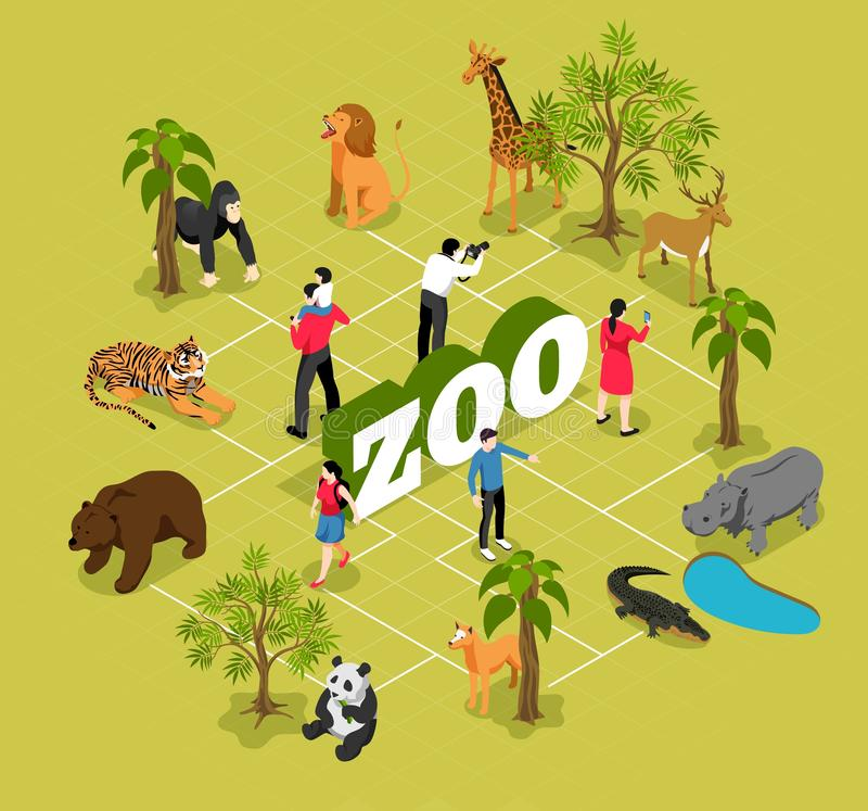 Zoo Isometric Flowchart. With animals near trees and pool and visitors on olive background vector illustration stock illustration