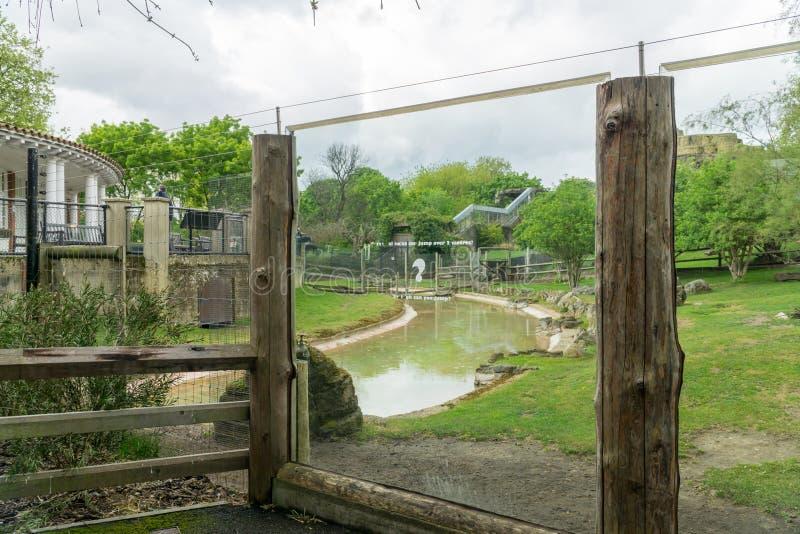 Zoo klauzura obrazy royalty free