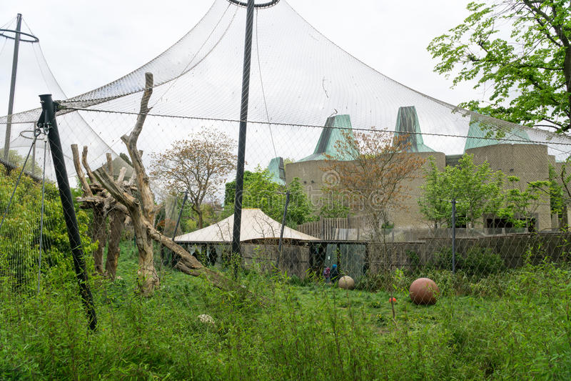 Zoo klauzura zdjęcie stock