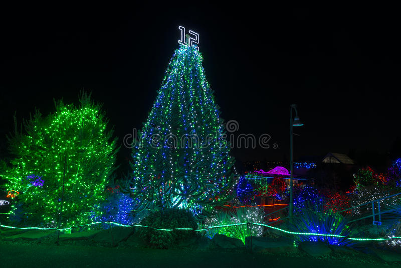 Zoo Lights. Tacoma, WA, USA - December, !4 2014. royalty free stock image