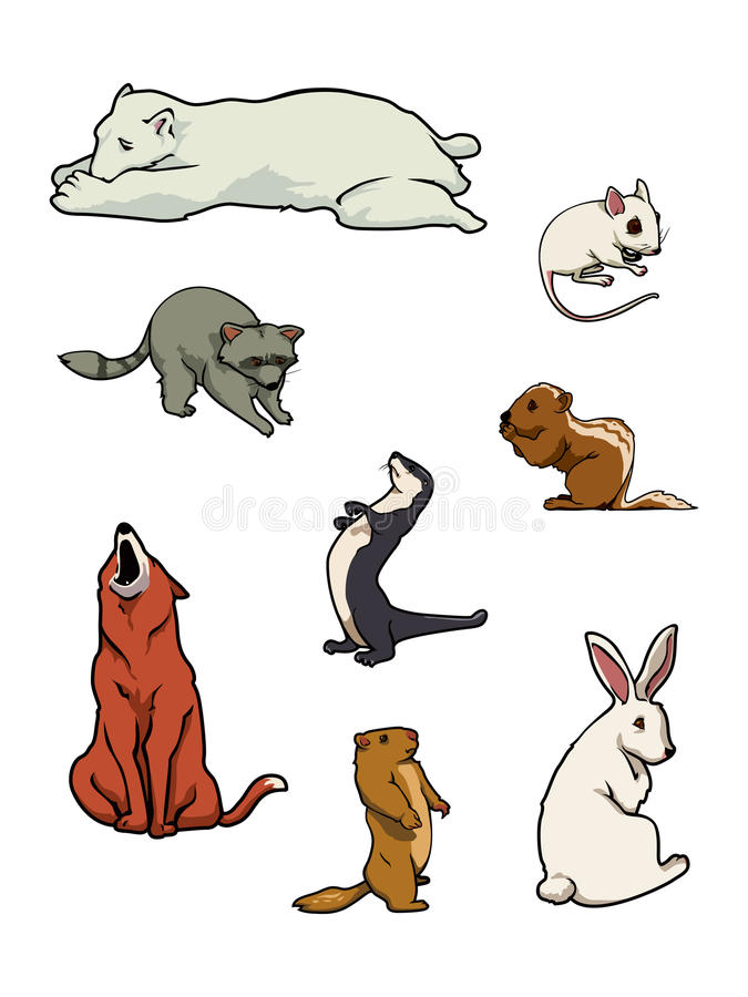 Free Zoo Mammals Collection Royalty Free Stock Photos - 12980418
