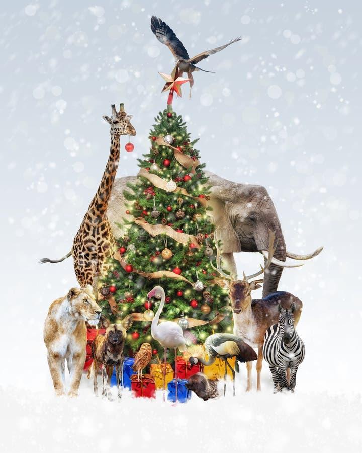 Zoodjur som dekorerar julgranen i snö royaltyfri fotografi
