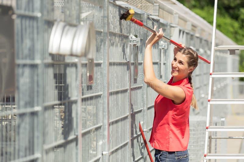 Zookeeperfrau, die an Reinigungskäfig im Tierheim arbeitet stockfotografie