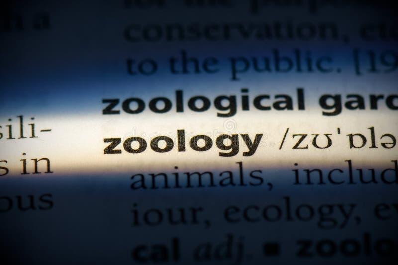Zoologia fotografia stock libera da diritti