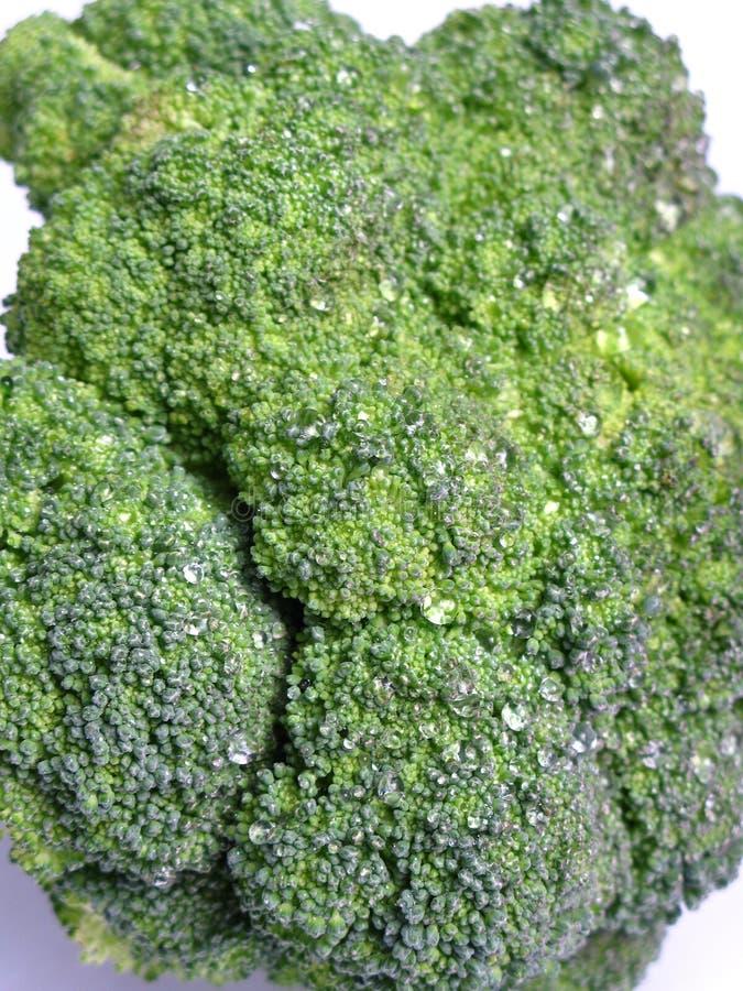 Zoom del bróculi imágenes de archivo libres de regalías