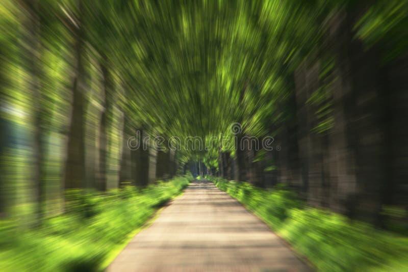 Zoom del camino foto de archivo