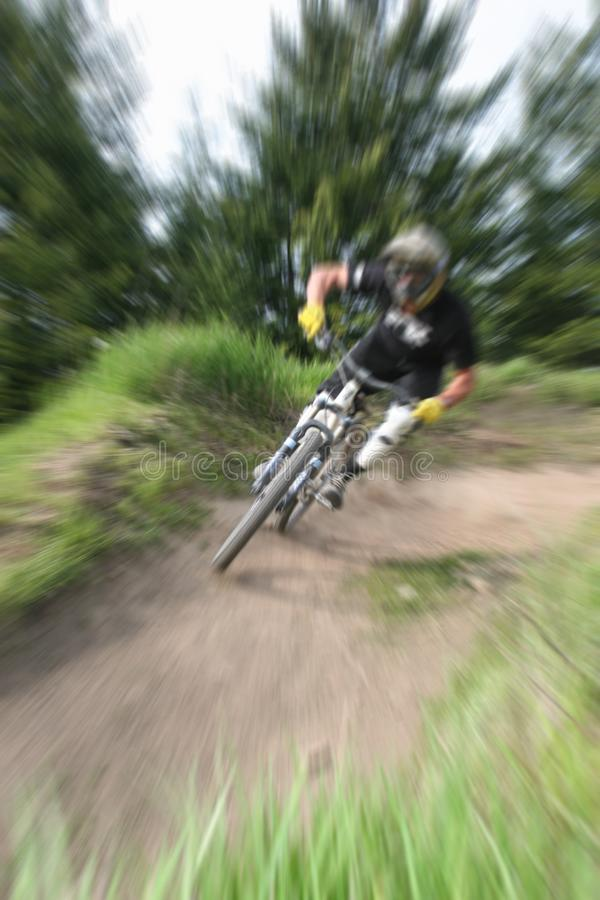 Zumbido do Mountain bike  imagem de stock royalty free
