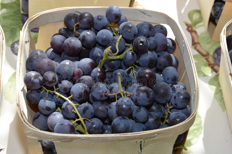 Zoom on Grapes Muscat. On a table royalty free stock photos