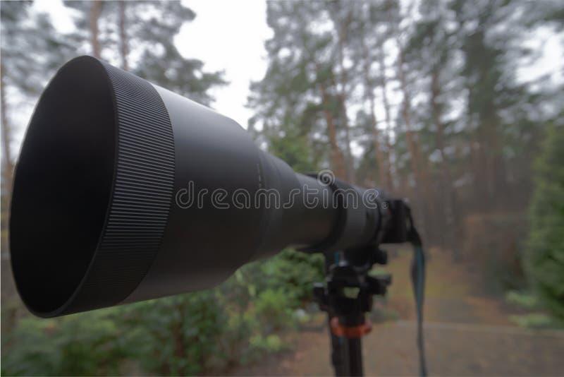 Zoom nero lungo con la lunghezza focale 150 millimetri - 600 millimetri su una macchina fotografica mirrorless su un treppiede immagini stock