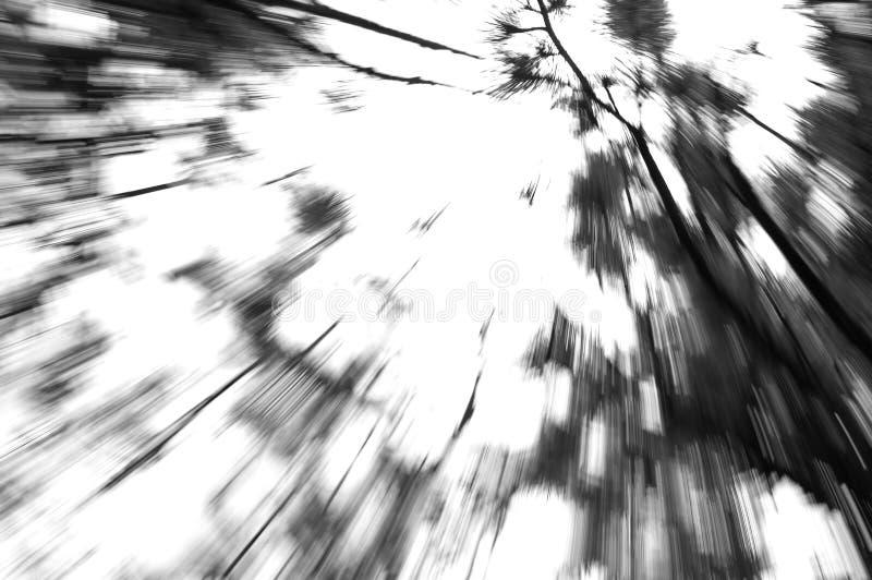 Zoom verso il cielo fotografia stock libera da diritti