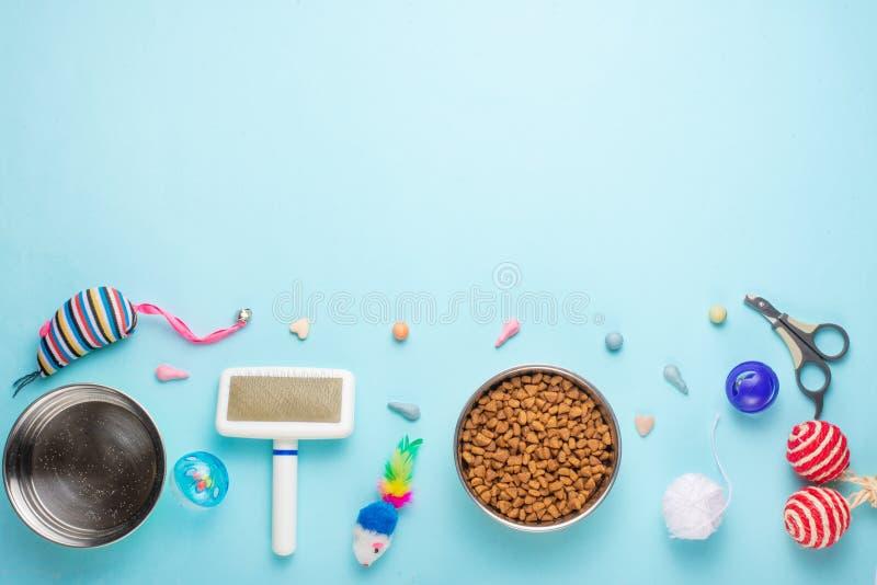 Zoomarket и магазин любимца Catty предпосылка, с аксессуарами кота на голубой предпосылке Знамя, плоское положение стоковые изображения