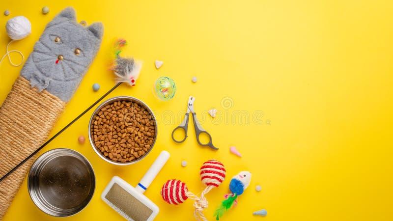 Zoomarket и магазин любимца Catty предпосылка, с аксессуарами кота на желтой предпосылке Кот Плоск-положение стоковое изображение
