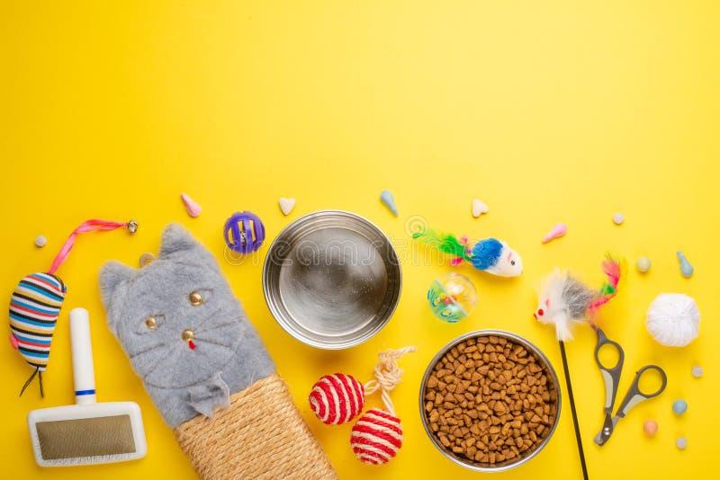 Zoomarket и магазин любимца Catty предпосылка, с аксессуарами кота на желтой предпосылке Кот Плоск-положение стоковое изображение rf