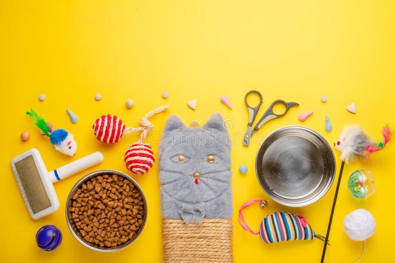 Zoomarket и магазин любимца Catty предпосылка, с аксессуарами кота на желтой предпосылке Кот Плоск-положение стоковая фотография rf