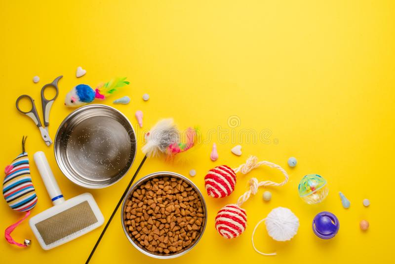 Zoomarket e loja do animal de estimação Fundo do gato, com acessórios do gato em um fundo amarelo Gato Liso-configuração, com esp foto de stock
