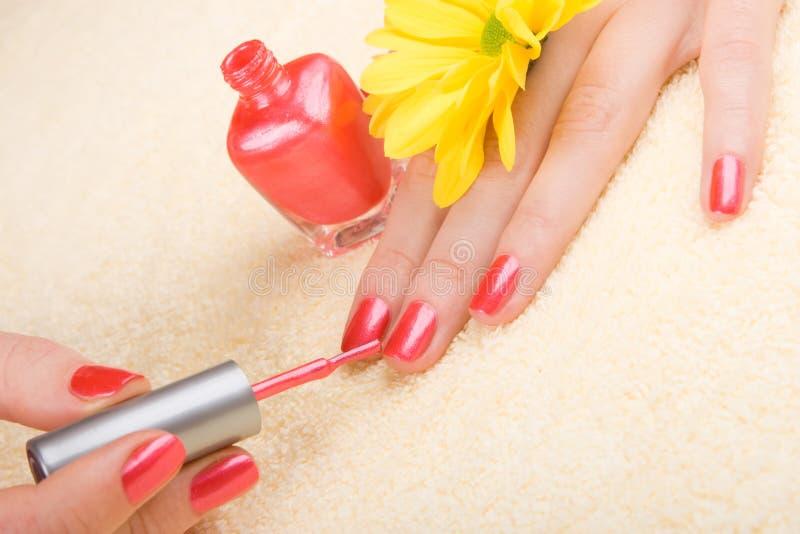 Download Zorg voor vrouwenhanden stock foto. Afbeelding bestaande uit leisure - 10777866