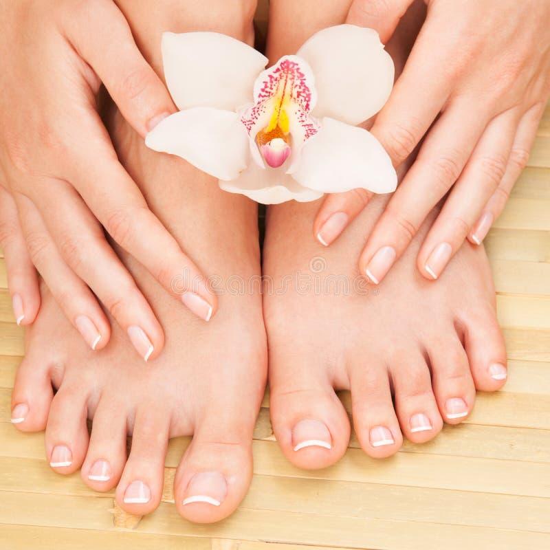 Zorgen voor mooie vrouwelijke huid en nagels Pedicure en mest bij schoonheidssalon Vrouwenpoten, handen met witte orhid bloem op royalty-vrije stock afbeeldingen
