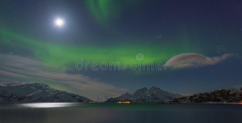 Zorz borealis panorama obraz royalty free