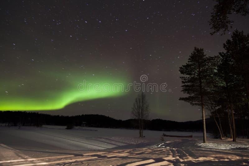 Zorza Borealis w Inari, Lapland, Finlandia fotografia royalty free