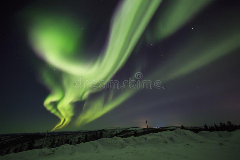 Zorza, noc przy Alaska, Fairbanks obraz royalty free
