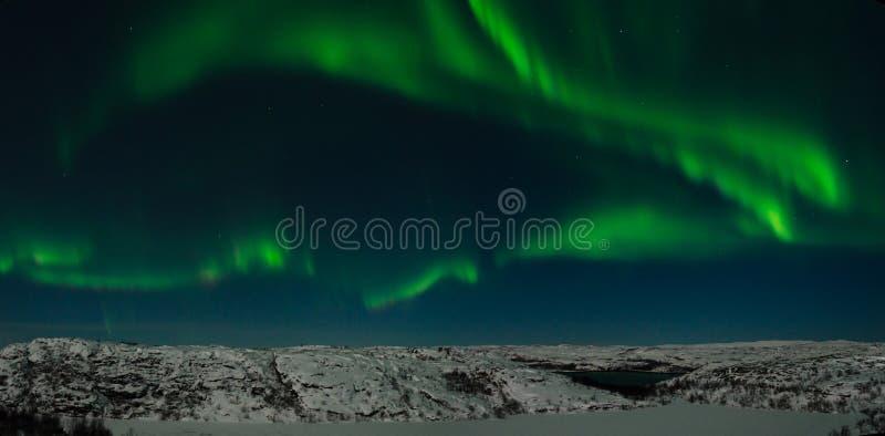 Zorza, północni światła, noc, tundra w zimie obraz stock