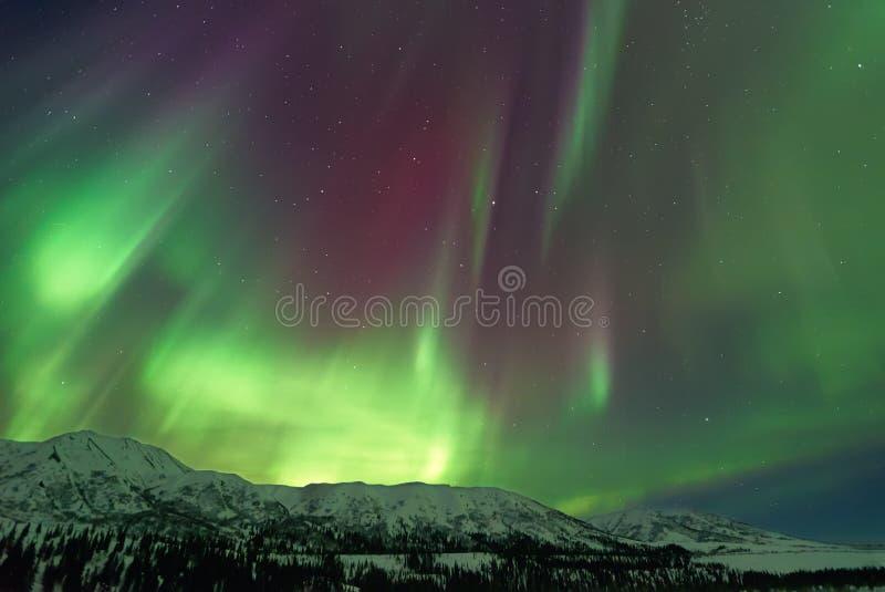 Zorzy Borealis Północni światła fotografia stock