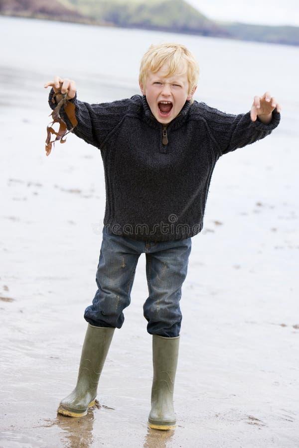 zostaw chłopca na plaży gospodarstwa stałego uśmiechniętych young zdjęcia royalty free
